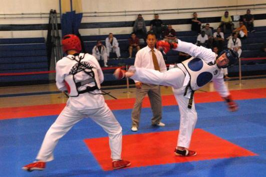 Learn taekwondo movements 🙅 screenshot 4