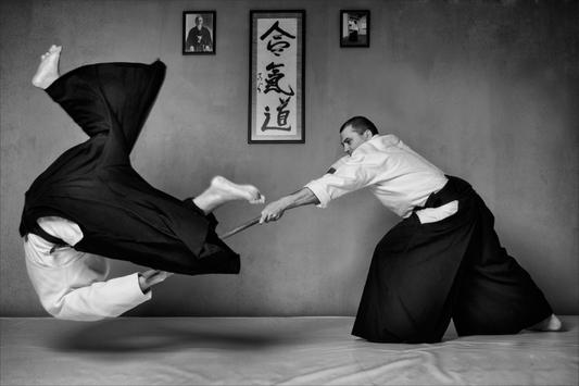 Learn Aikido movements 🥋 poster