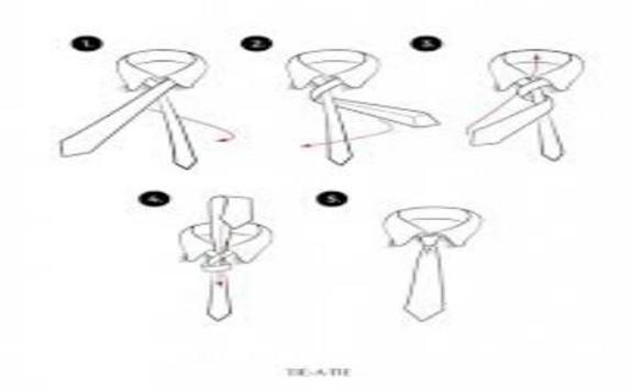 learn how to tie knots screenshot 5