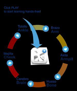 TotalSPEAK learn languages apk screenshot