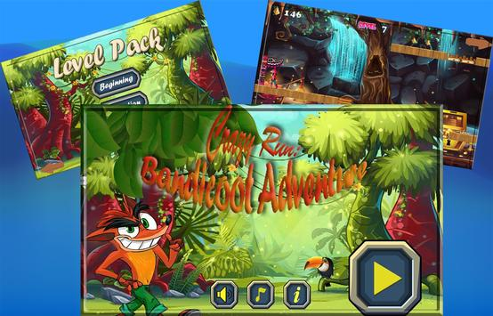 Crazy Run: Bandicoot Adventure screenshot 4
