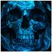 Blue Skull Live wallpaer