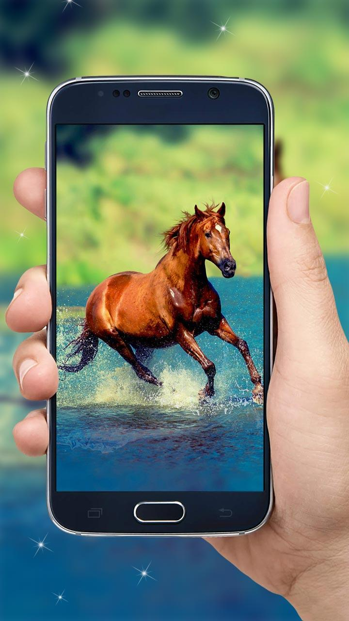 Running Horse Hd Wallpaper For Android Apk Download