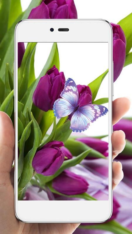 purple tulip hd live wallpaper apk download free personalization