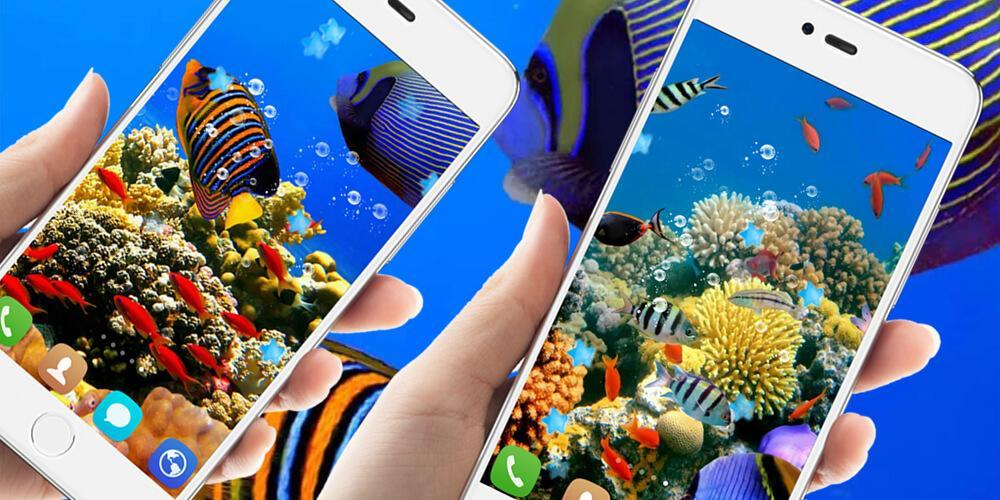 Hd Underwater Live Wallpapers For Android Apk Download