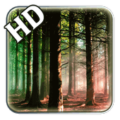 HD Forest Live Wallpaper icon