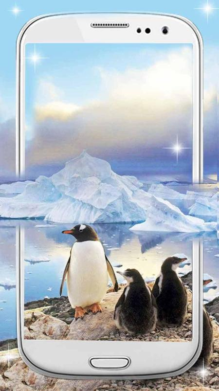 Snow Mini Penguin Live Wallpaper Poster Apk Screenshot