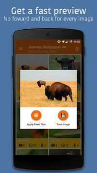 Animals Wallpapers 4K 🦊 apk screenshot