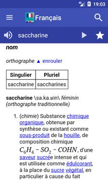 French Dictionary - Offline poster