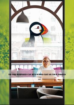 Free Puffin Browser Guideline for Android - APK Download