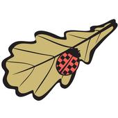 EcoTaxi Driver icon