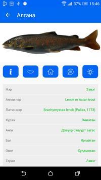 eZagas apk screenshot