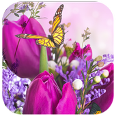 Flower Live Wallpaper Dancing Butterfly icon