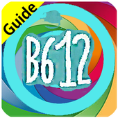 Free B612 Selfie Camera Guide icon