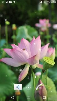 3D Lotus Live Wallpaper screenshot 3