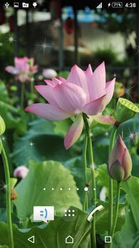 3D Lotus Live Wallpaper apk screenshot