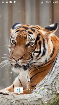 Tiger Live Wallpaper apk screenshot