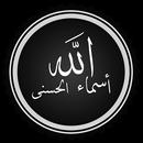 شرح أسماء الله الحسنى للدكتور النابلسي APK