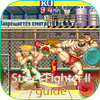 Guia Street Fighter 2 icon