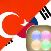 Korean Turkish FREE icon