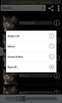Cats & Kittens Sounds screenshot 1