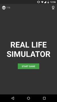 Real life Simulator poster