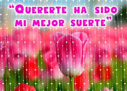 Frases de amor con hermosos tulipanes poster