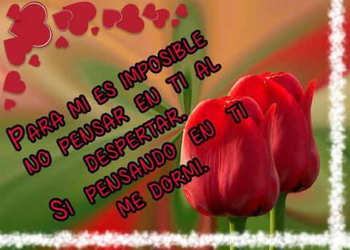 Frases de amor con hermosos tulipanes screenshot 1