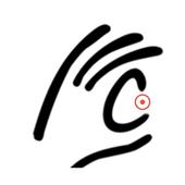 CALLector icon