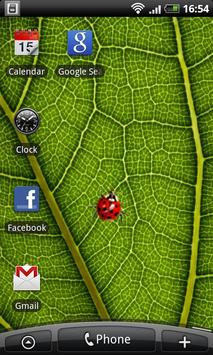 Ladybug - Live Wallpaper poster