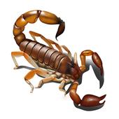 Scorpio - Live Wallpaper icon