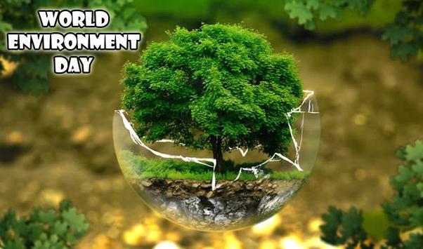 World Environment Day Photos poster