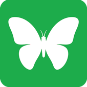 Butterfly M icon