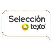 Selección Texo 2013 icon