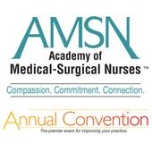 AMSN Convention icon