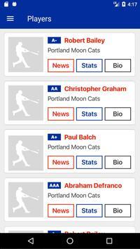 Big League Advance screenshot 1