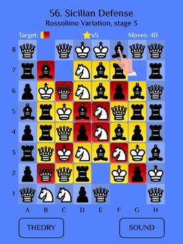 Chess Match: Sicilian defense screenshot 6