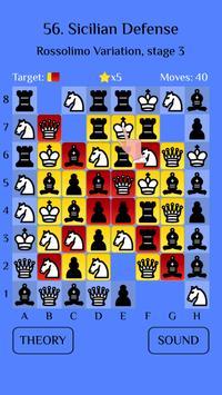 Chess Match: Sicilian defense poster
