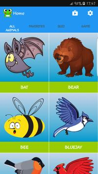 Animal Animations and Sounds poster