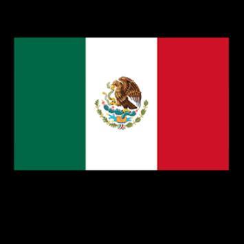 Mexico Televisiones screenshot 1