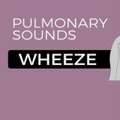 Expiratory wheeze (lungs) icon