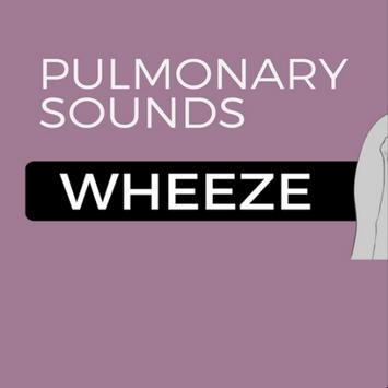 Expiratory wheeze (lungs) poster
