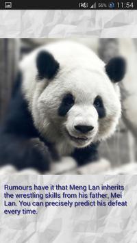 Panda - Memory Game screenshot 4