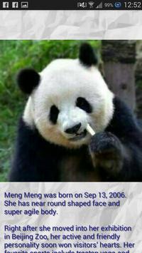 Panda - Memory Game screenshot 2