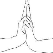 15 Mudras for 300+ Diseases icon