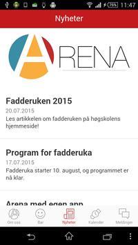 Arena screenshot 3