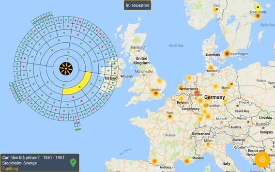 Kinsmap screenshot 7