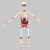 Birikis Skeleton icon