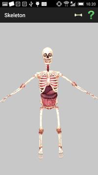 Birikis Skeleton poster
