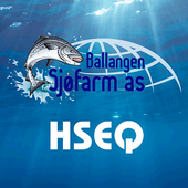 Ballangen HSEQ icon
